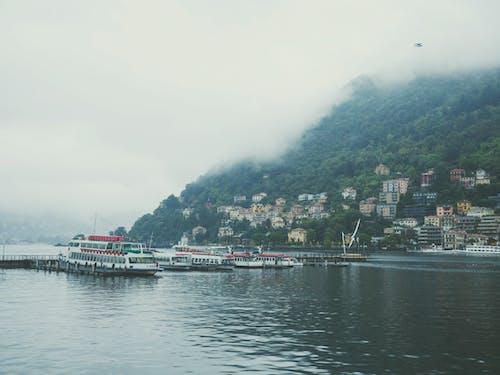 Fotos de stock gratuitas de barco, bosque, con niebla, montaña