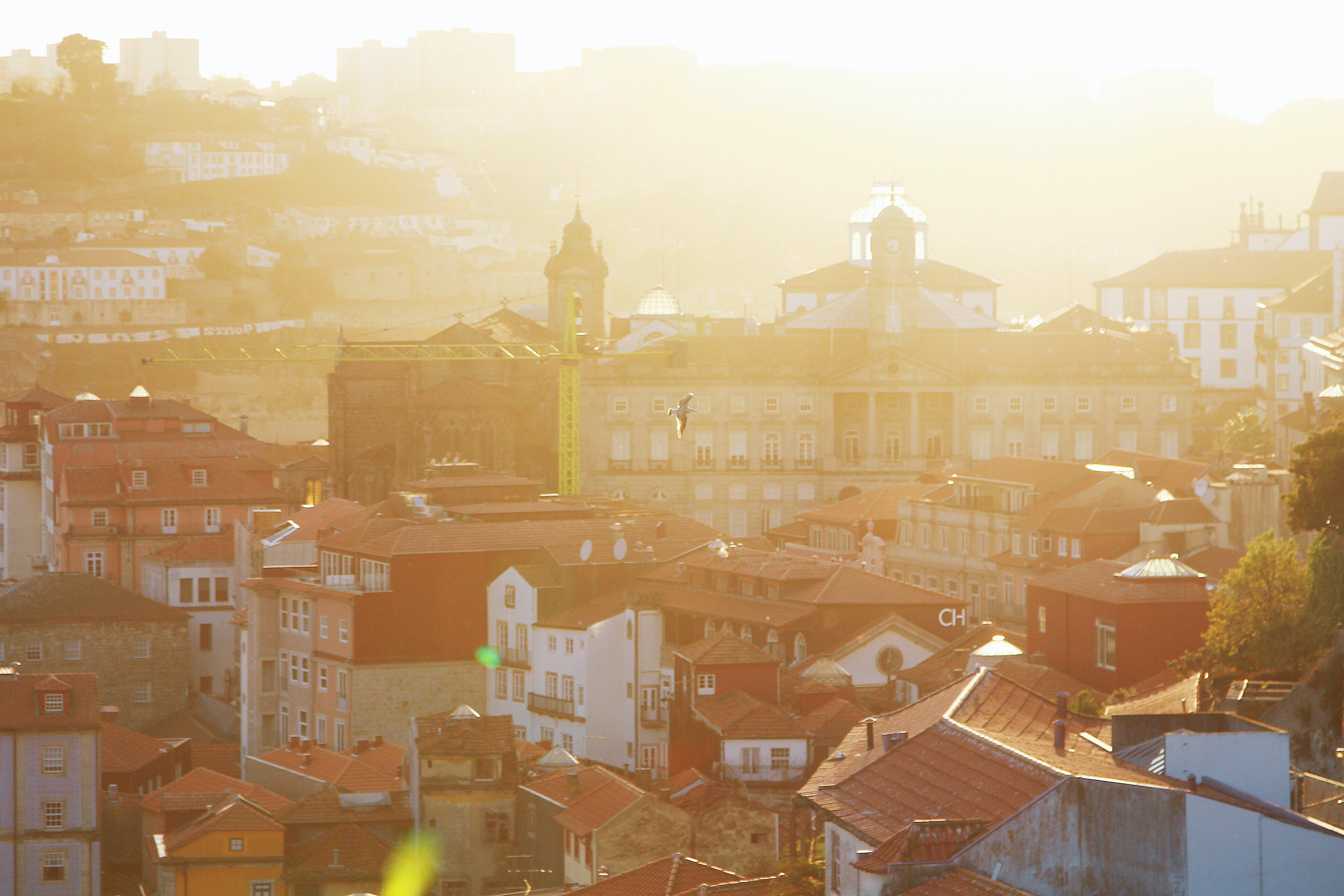 Foto stok gratis Arsitektur, atap, bangunan, cerah