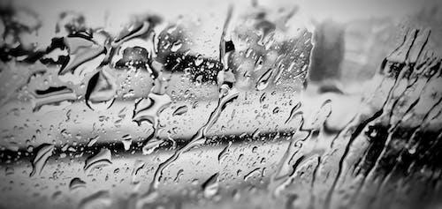 Free stock photo of black and white, rain, rain drops