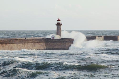 คลังภาพถ่ายฟรี ของ ชายทะเล, ทะเล, ประภาคาร, มหาสมุทร
