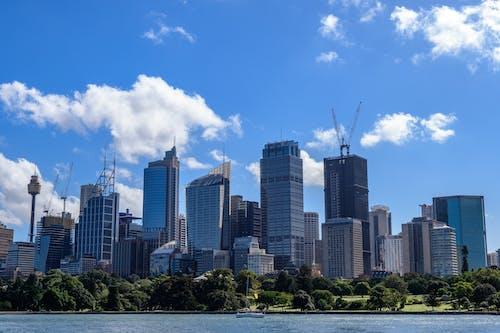 Imagine de stoc gratuită din albastru, cer, clădiri, cocor