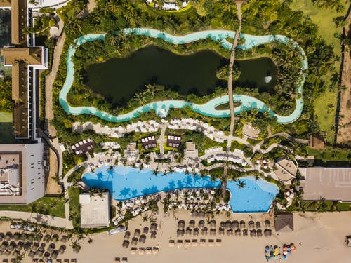 Areal Photography Of Swimming Pool Surrounded By Trees