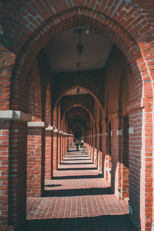 アーチ, エントランス, レンガ, 廊下の無料の写真素材