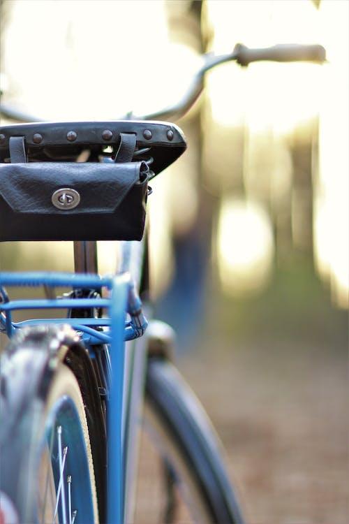 Darmowe zdjęcie z galerii z jazda na rowerze, las, niebieski, rama rowerowa