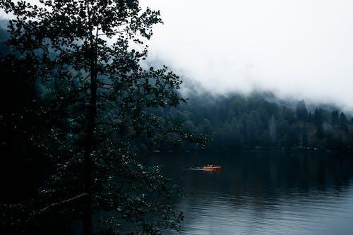 Kostenloses Stock Foto zu abend, bäume, boot, dämmerung