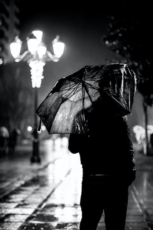 čierny abiely, človek, dážď
