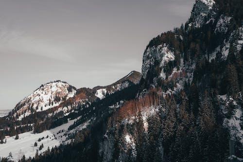 Základová fotografie zdarma na téma cestování, denní světlo, hora, krajina