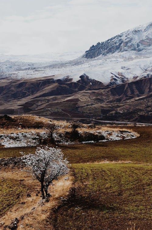 Ingyenes stockfotó festői, fű, hegy, hó témában