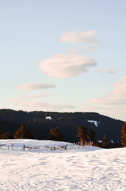 Foto stok gratis alam, awan, beku, cahaya