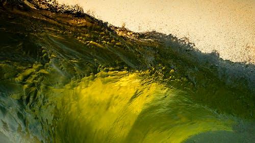 Gratis stockfoto met buiten, daglicht, golven, groen