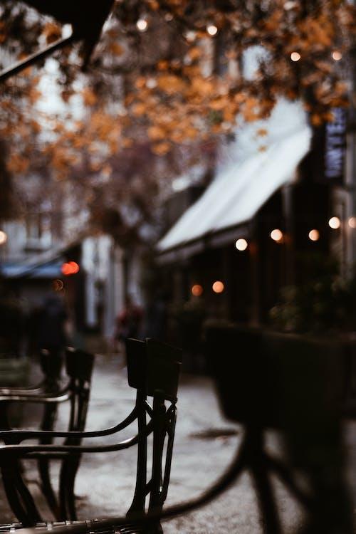 Darmowe zdjęcie z galerii z architektura, ciemny, jasny, jesień