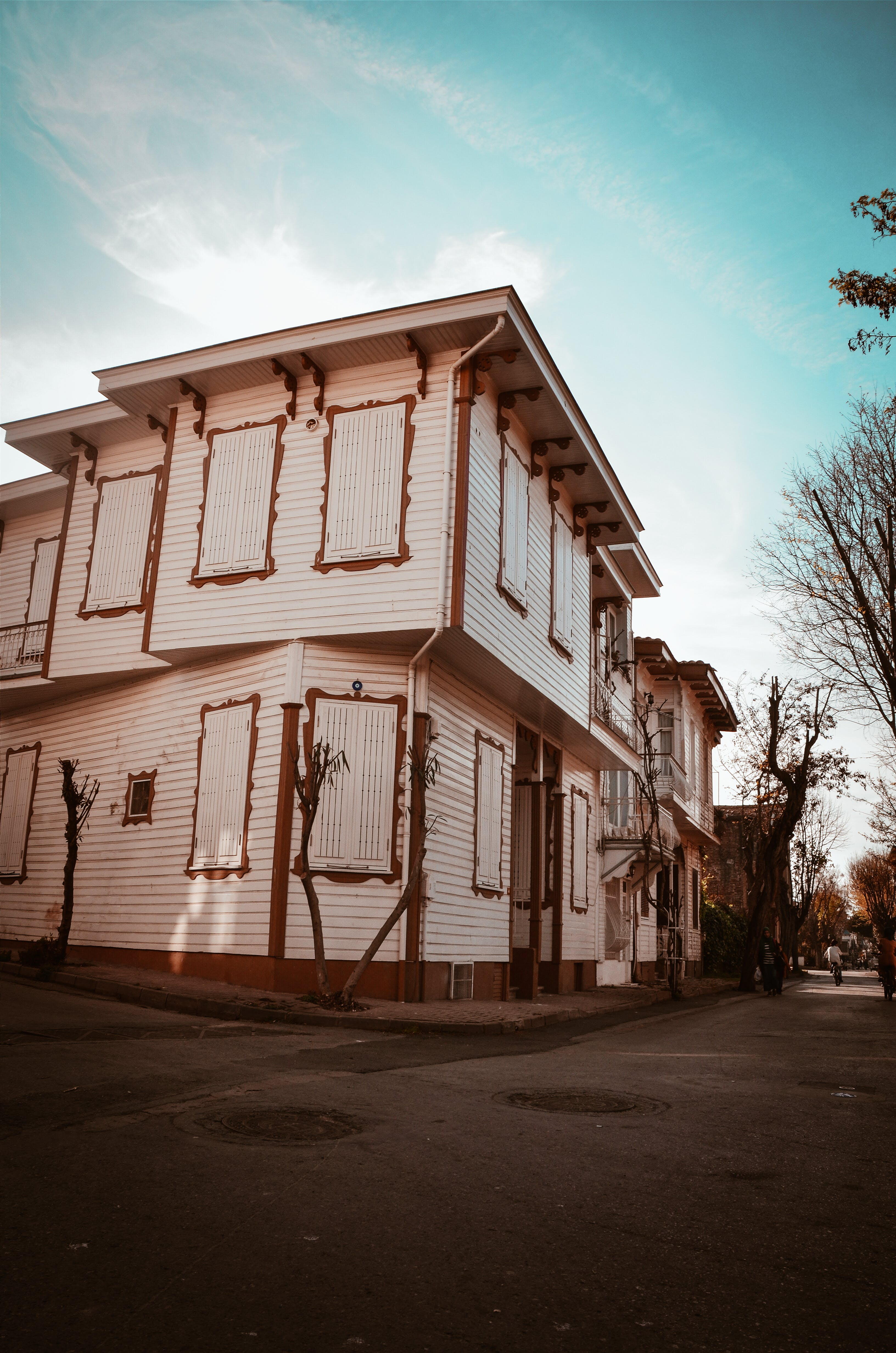 Ingyenes stockfotó ablakok, alacsony szögű felvétel, csupasz fa, építészet témában