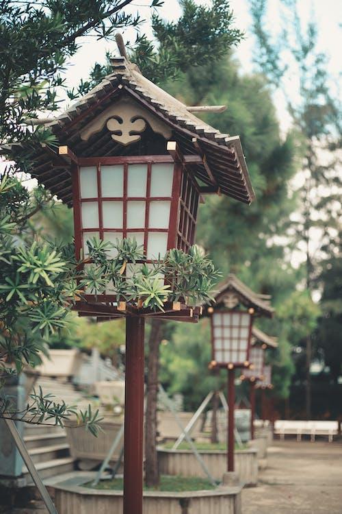 日本灯笼 的 免费素材照片