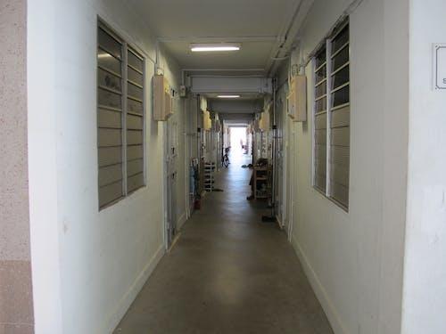 Free stock photo of Common corridor of HDB flat