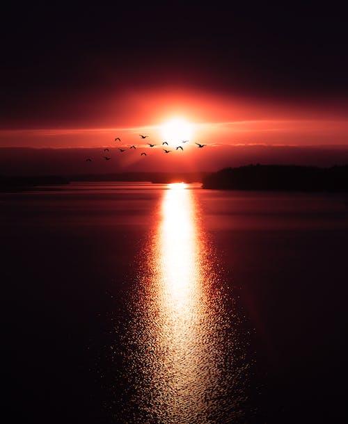คลังภาพถ่ายฟรี ของ กลางแจ้ง, การสะท้อน, ขอบฟ้า, ดวงอาทิตย์