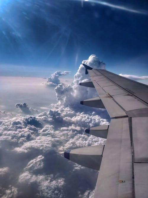 Foto stok gratis awan, nila, pesawat terbang