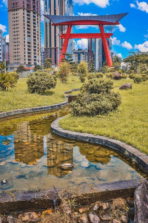 Darmowe zdjęcie z galerii z bajka, brazylia, chmury, drewno