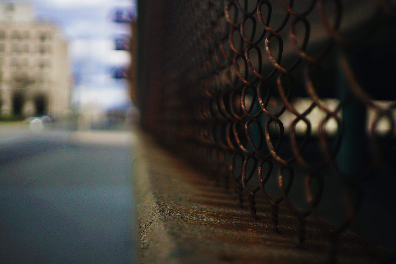 2019年, a6500, ソニー, フェンスの無料の写真素材