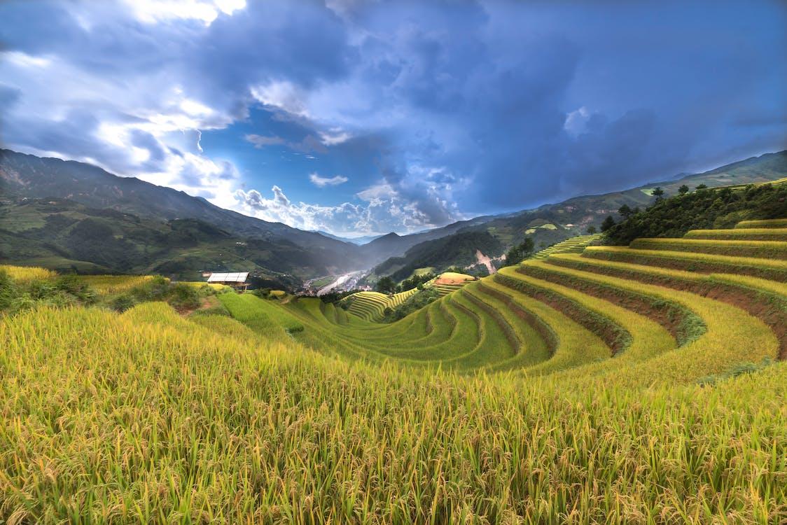 akkerland, berg, boerderij