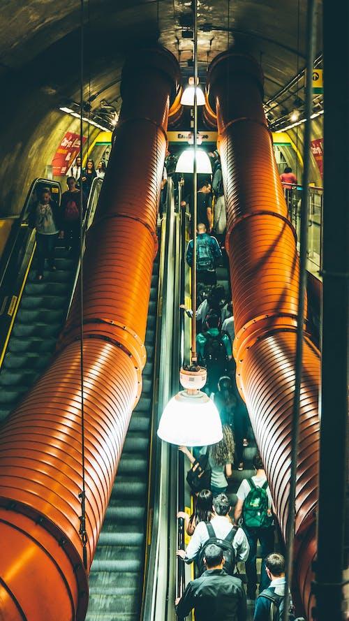 Immagine gratuita di acciaio, affollato, architettura, città