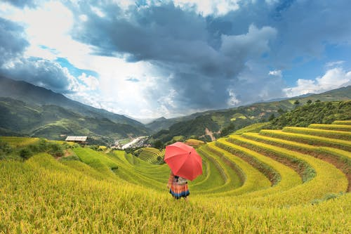 Ingyenes stockfotó farm, festői, fű, hegy témában