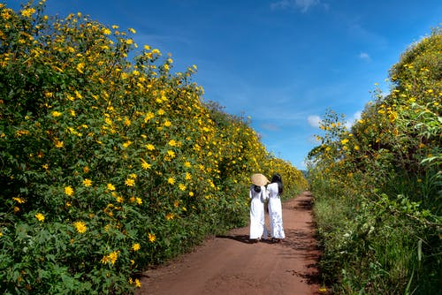 Two Woman Walking on Pathway Surround With Flowers