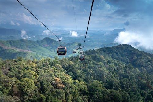 Photos gratuites de arbres, aventure, ciel, collines