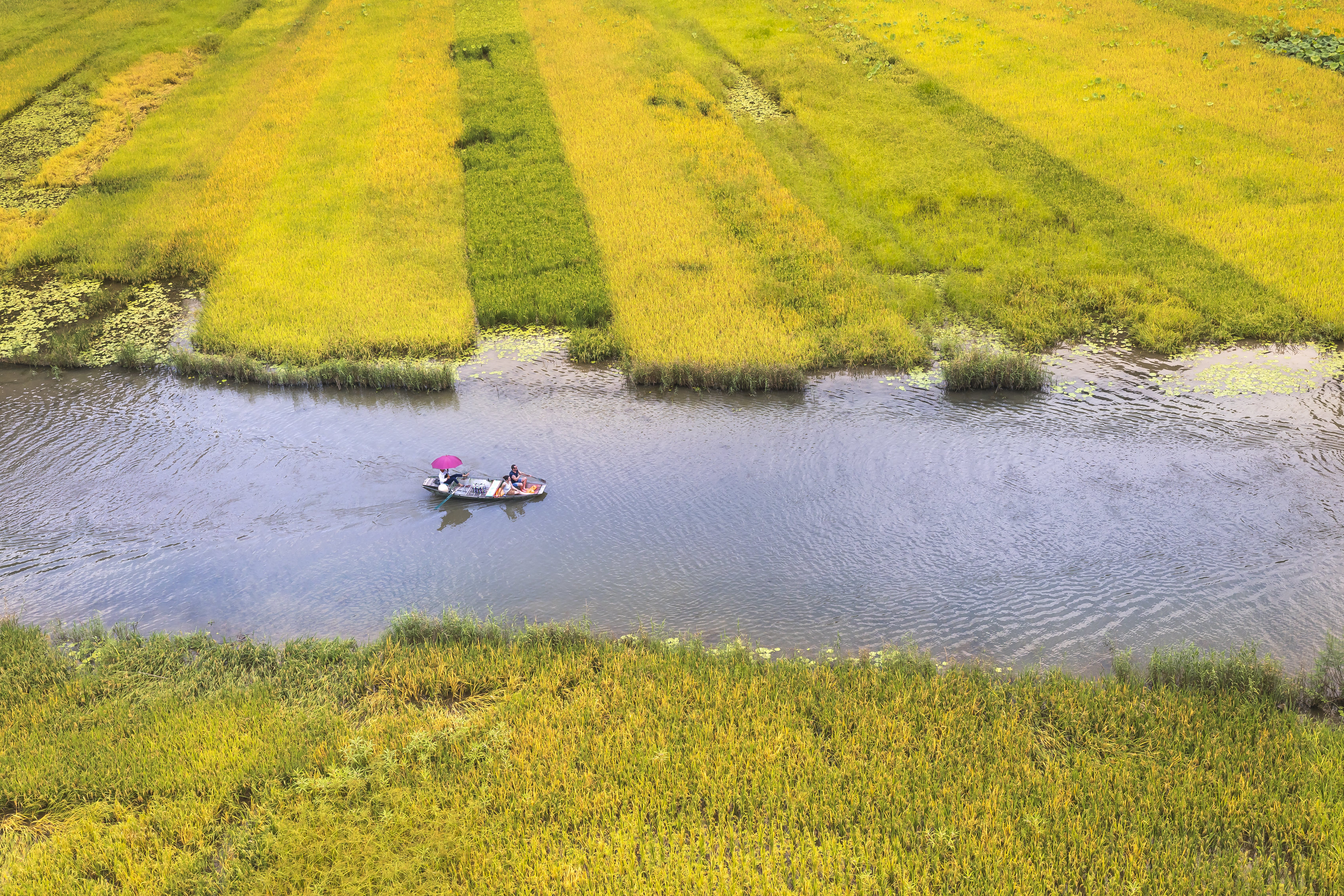 Boat on River Between Green Field