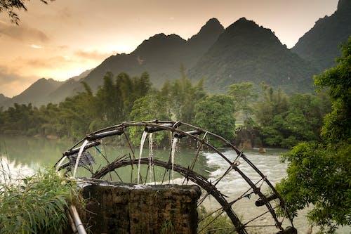 Foto stok gratis air, air terjun, alam, backlit