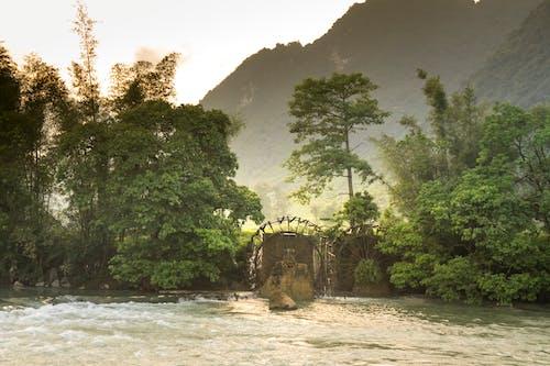 Безкоштовне стокове фото на тему «вода, водяне колесо, вродлива, гора»