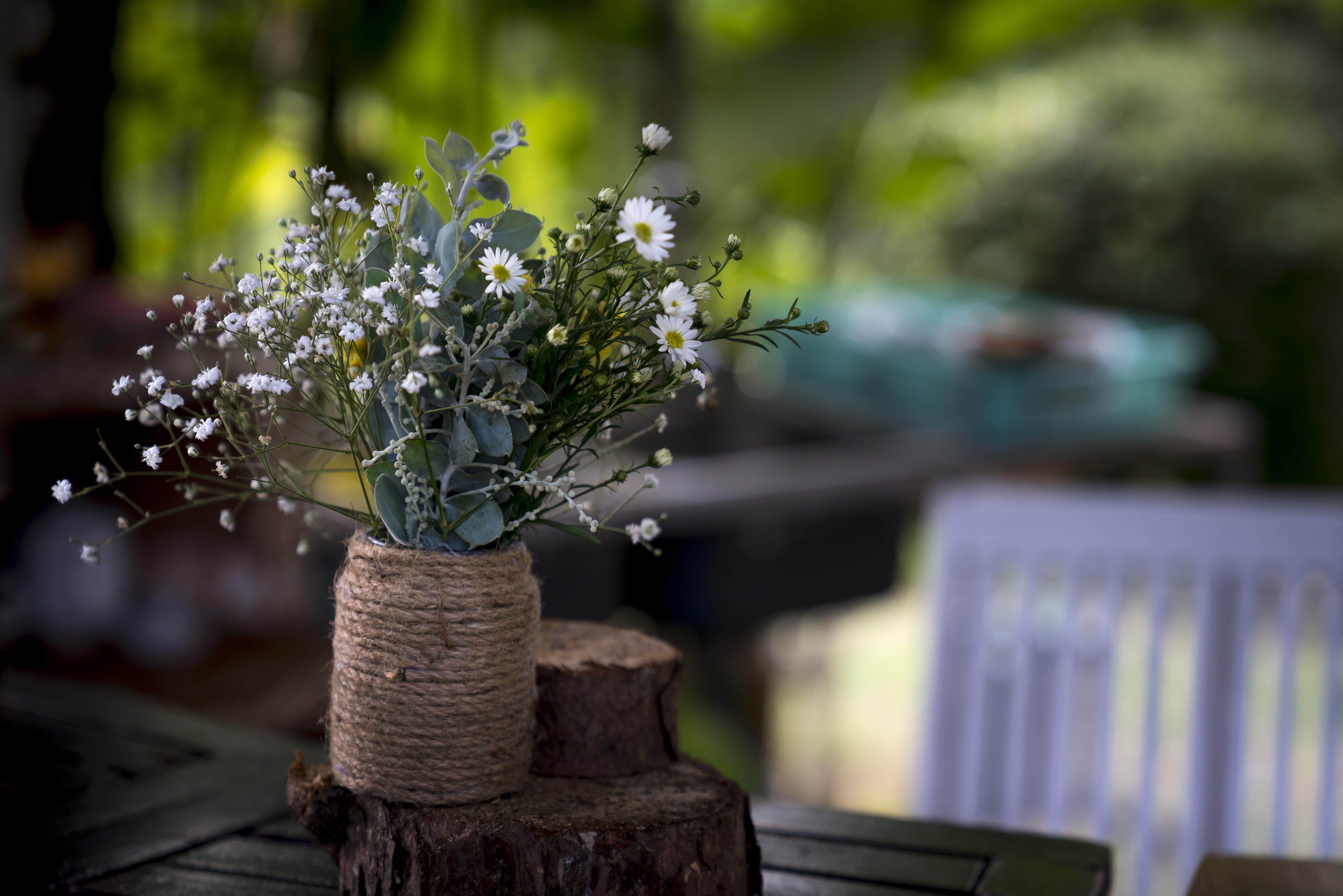 Ảnh lưu trữ miễn phí về cái bình hoa, cắm hoa, cuộc sống tĩnh lặng, gỗ
