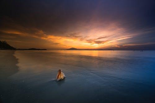 Foto profissional grátis de água, ao ar livre, cair da noite, cênico