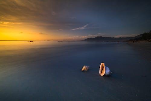 Gratis arkivbilde med bølger, gylden time, hav, havkyst