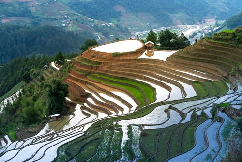 Terraces With Water