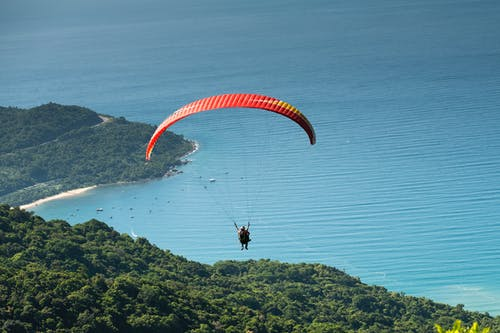 Photo of Person Paragliding Over Forest