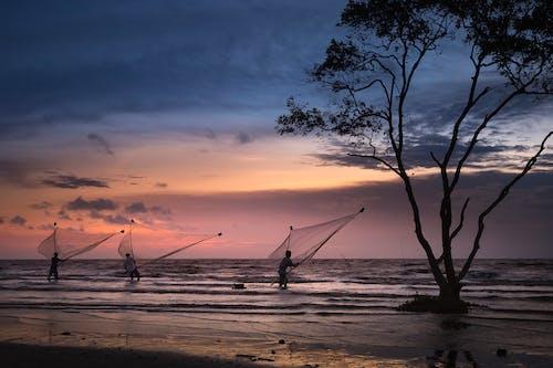 Gratis arkivbilde med bølger, daggry, fisk garn, fiske