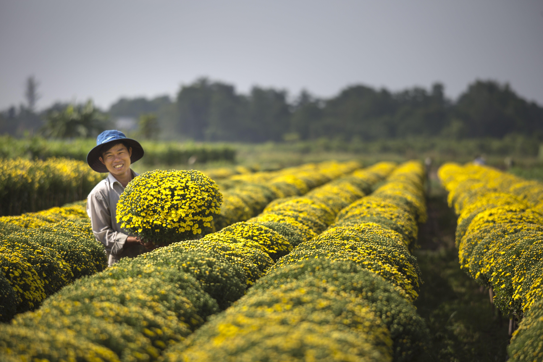 Man Holding Yellow Flowers