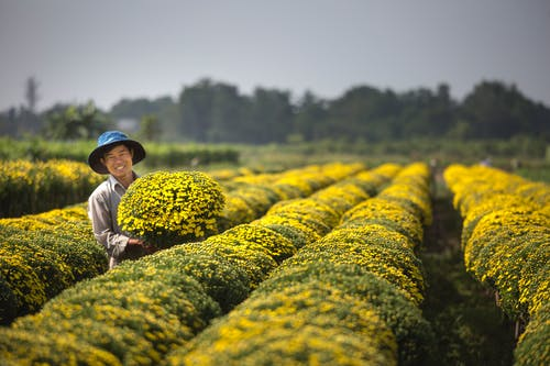 Man Holding Yellow Flowers