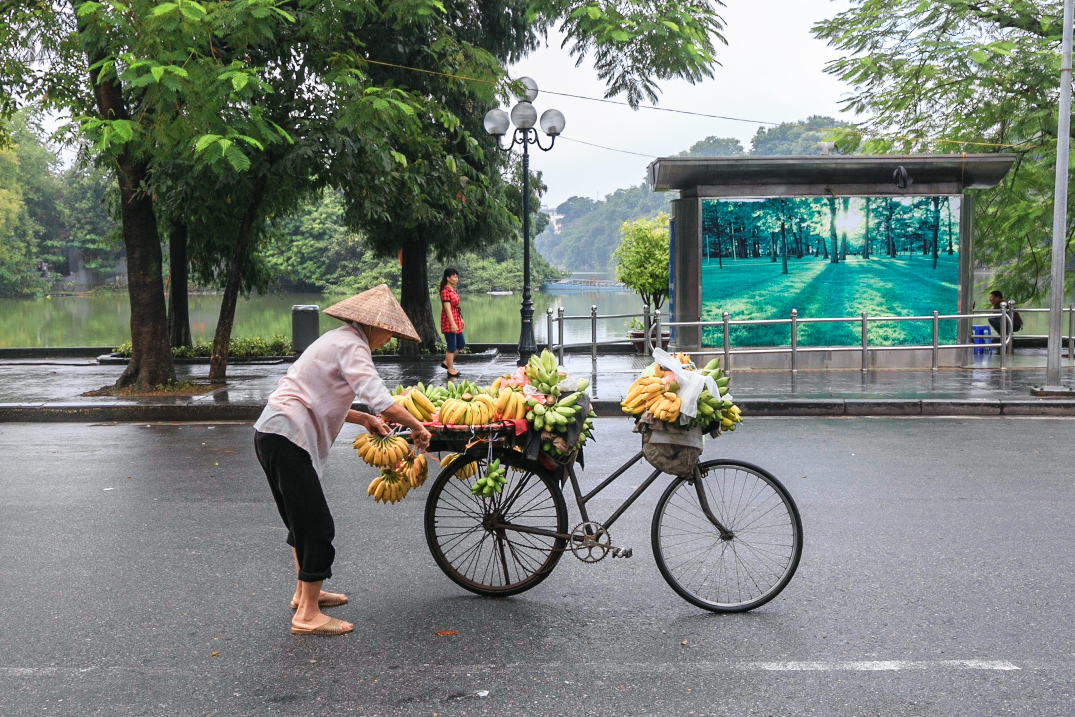 Gratis lagerfoto af busstoppested, cykel, dagslys, folk