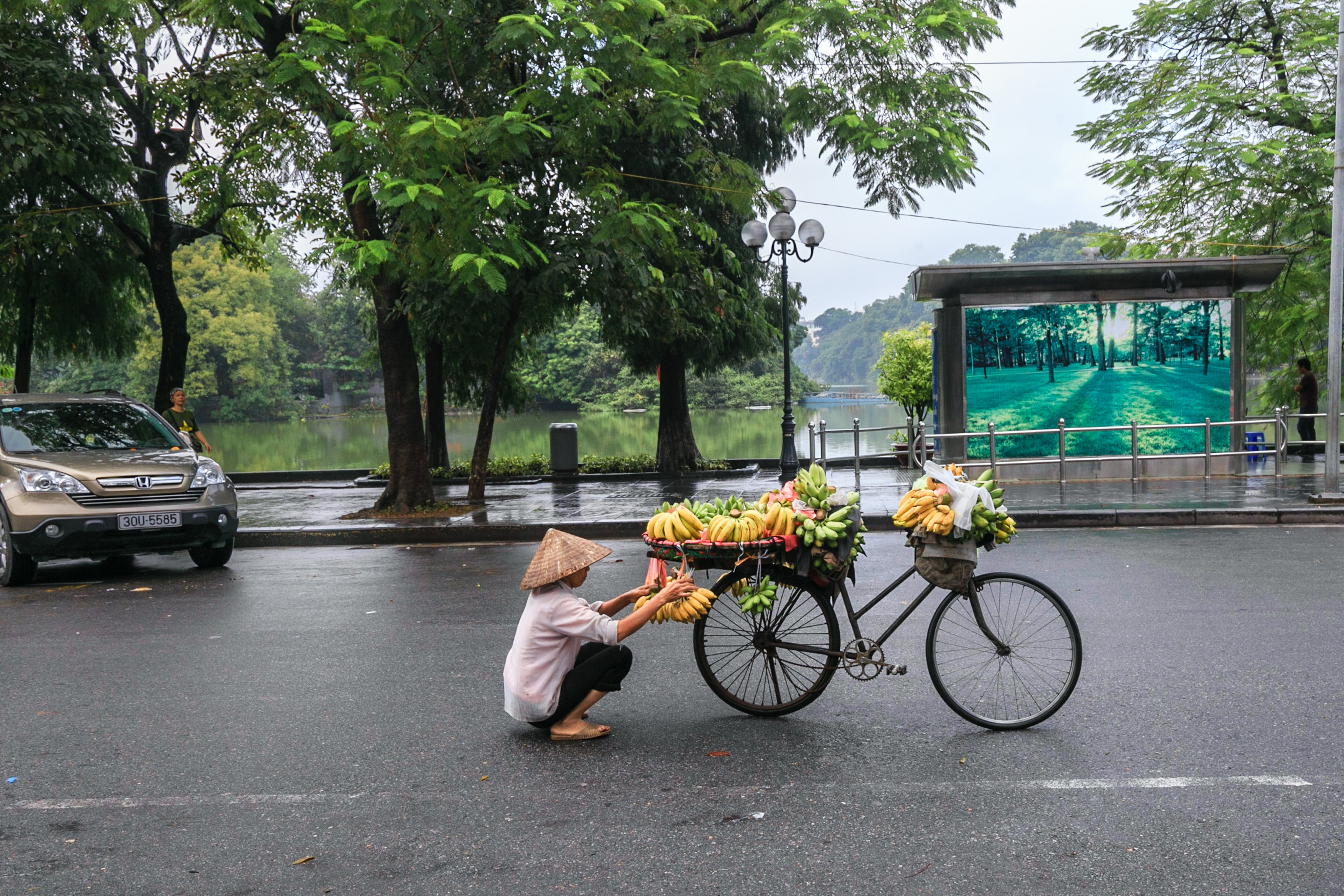 Person Sitting Near Bicycle With Fruits