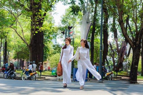 Foto profissional grátis de andando, árvores, branco, cruzamento