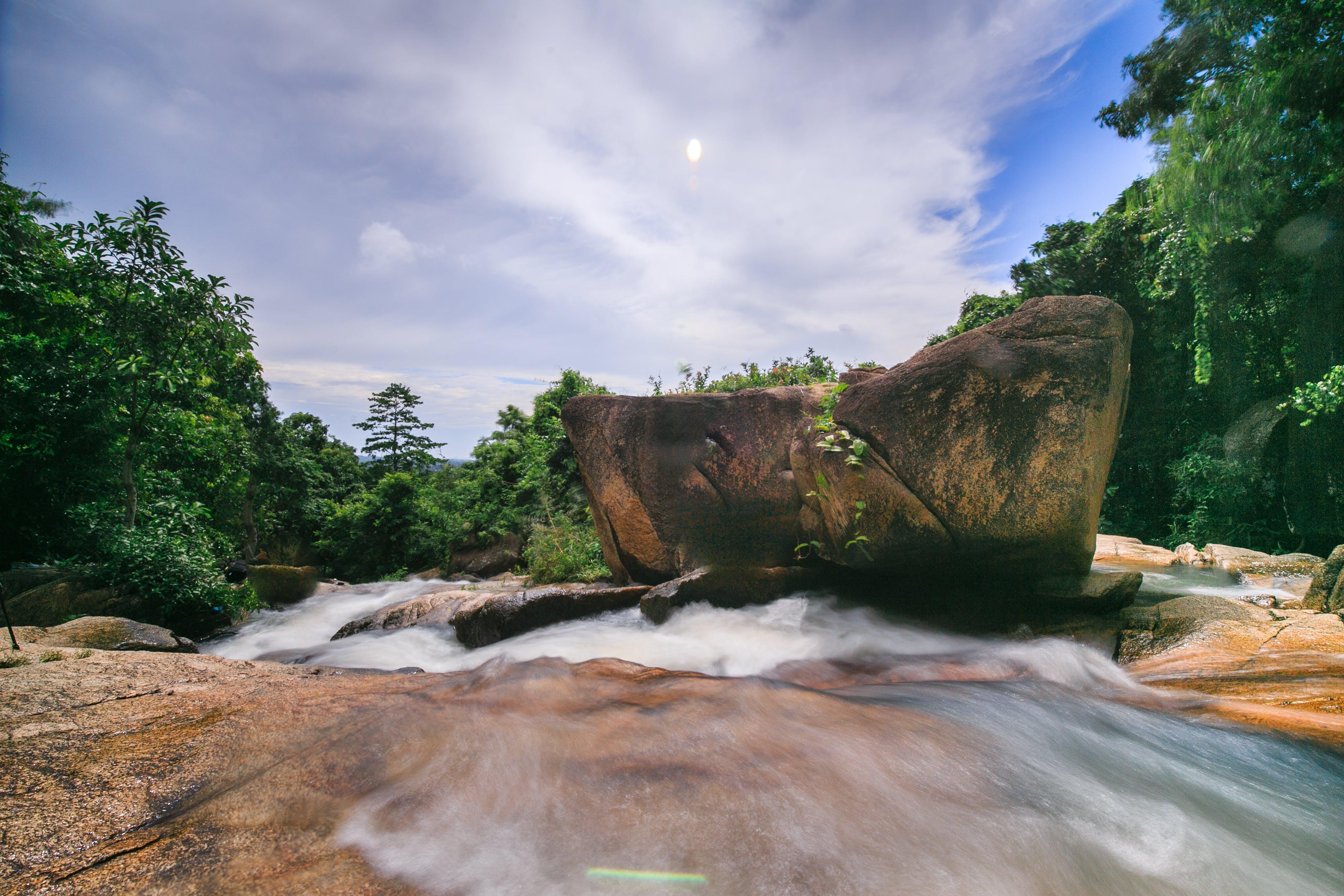 Foto profissional grátis de água, ao ar livre, árvores, atraente