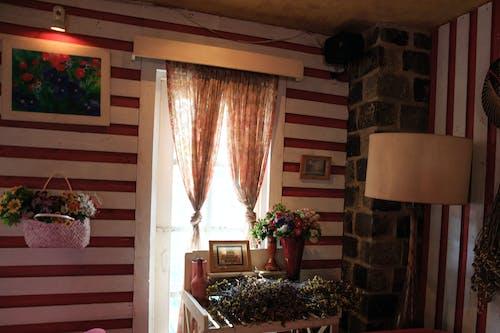 가족, 건축, 꽃꽂이, 내부의 무료 스톡 사진