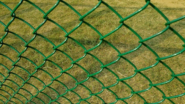 Free stock photo of field, summer, pattern, texture