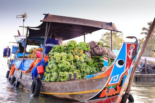 Бесплатное стоковое фото с банан, вода, водный транспорт, лодка