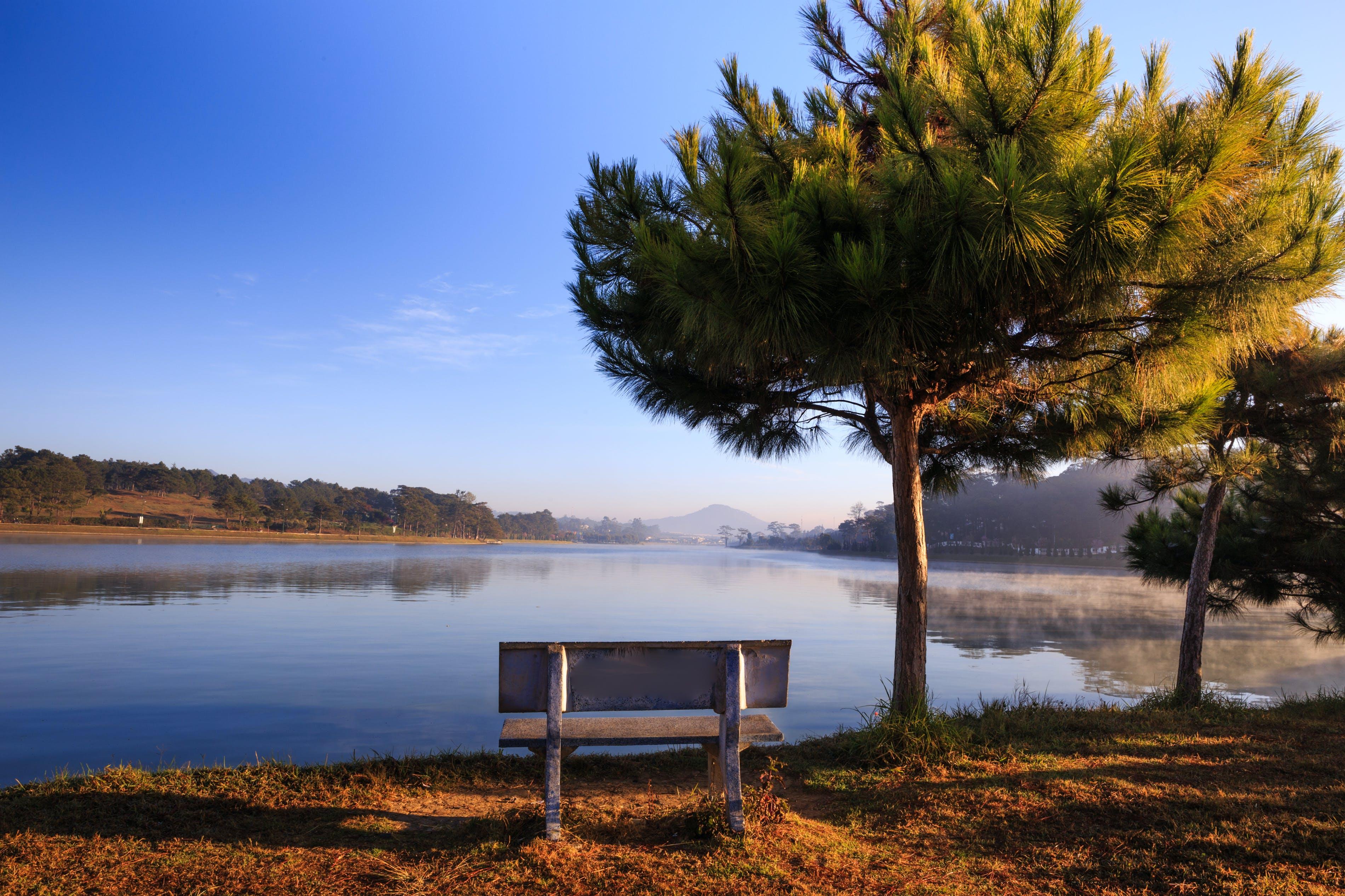 Foto stok gratis alam, badan air, danau, daun gugur