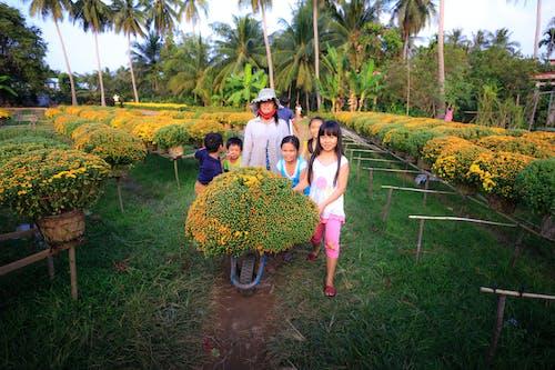 People Standing in Between Plant Outdoors