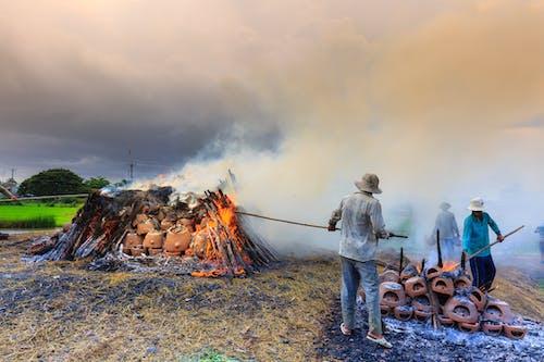 Gratis stockfoto met as, bloempotten, brand, branden