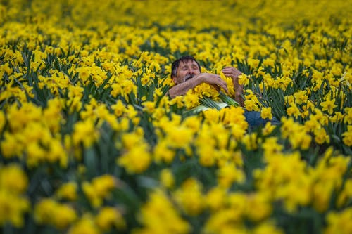 Photo Of Man Lying On Flower Fields
