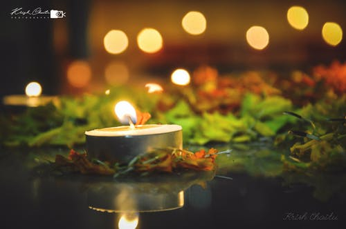 Free stock photo of beautiful flowers, bunch of flowers, Candlelights, Diwali